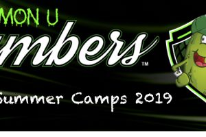 Kew CC Summer Camps 2019