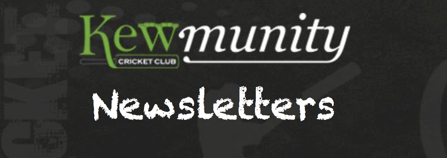 newsletters button