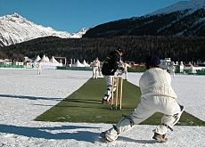 winter cricket